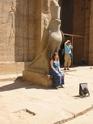 Edfou (sanctuaire du Dieu Horus) Edfou_18
