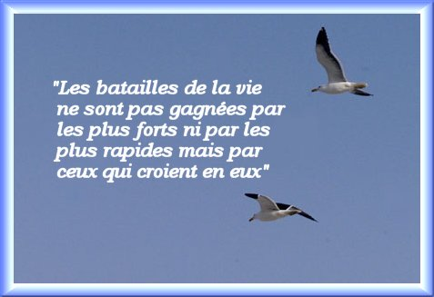 Belles citations - Page 15 12455910