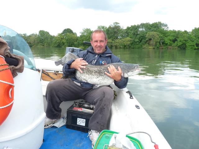 Quelques poissons du 17 juillet Bassin16
