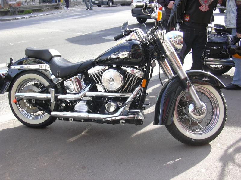 Combien de Softail sur le forum Passion-Harley Hd_ren11