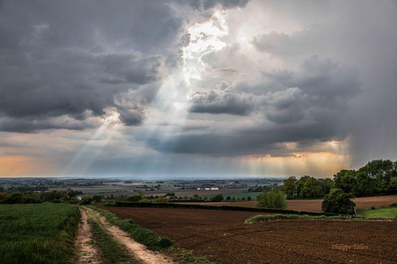 Nature et orages Nord Pas-de-Calais