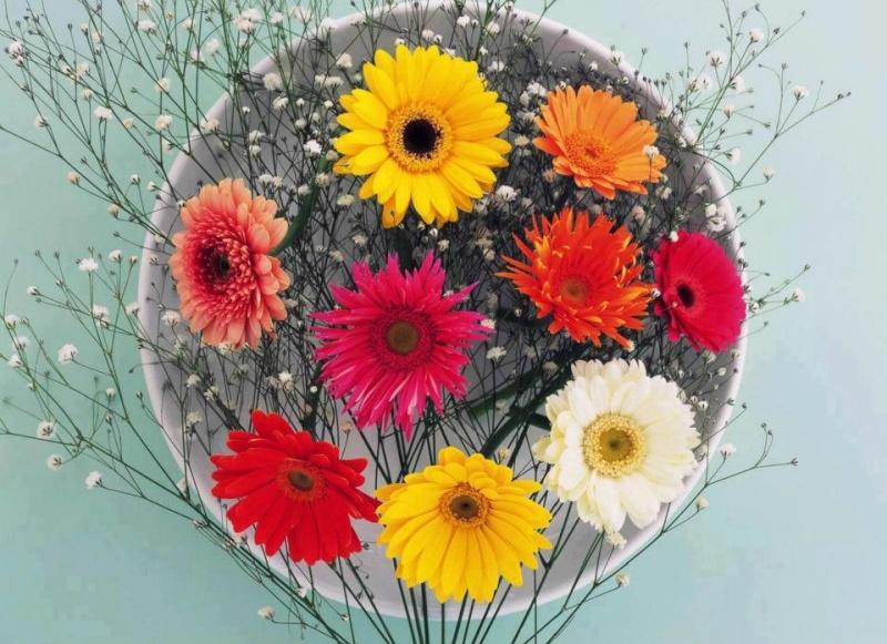 blablablas de Juin 2012..........! Fleurs10