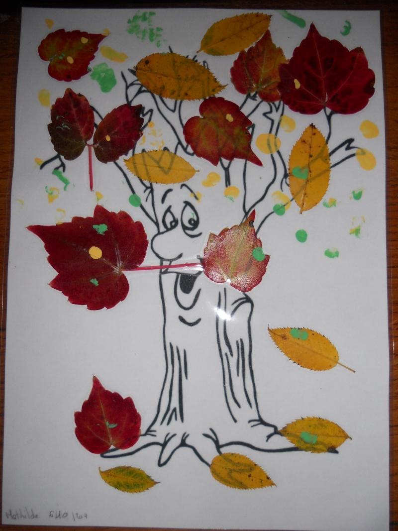 arbre d'automne Dscn1212