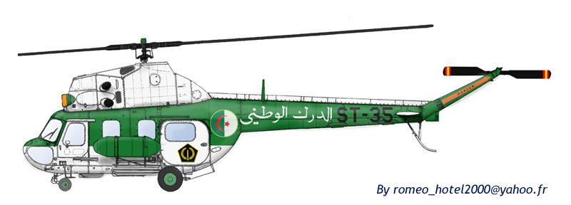 صور لدرك الوطني الجزائري - صفحة 2 Mi-2-g10