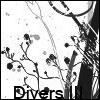 > Brushes Divers14