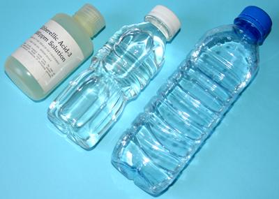 Utilisation de l'acide gibbérellique GA3 Img_1411