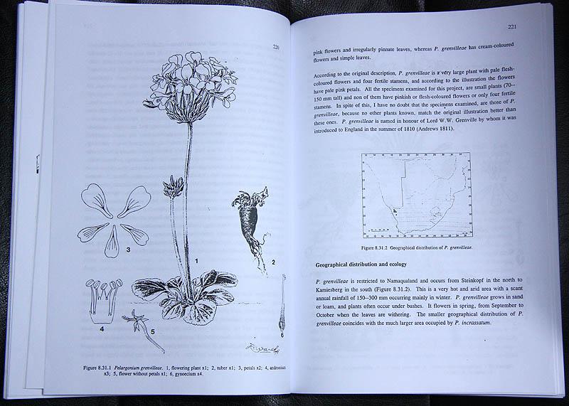 Littérature consacrée au Pelargonium, Sarcocaulon & co Img_5610