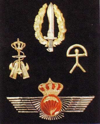 Les forces Espagnoles UOE Sans_t45