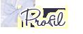 Anciens design Profil11