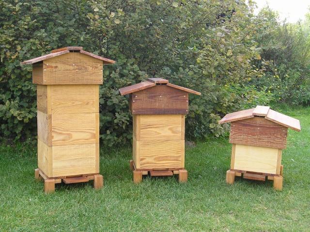 HELP!!!!une ruche sur un toit...........la saga! - Page 8 Ruche_13