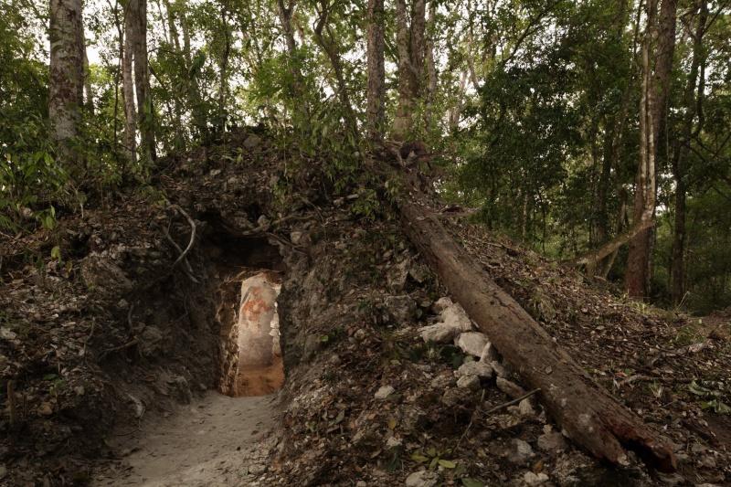 Découverte du plus ancien calendrier maya  36580010