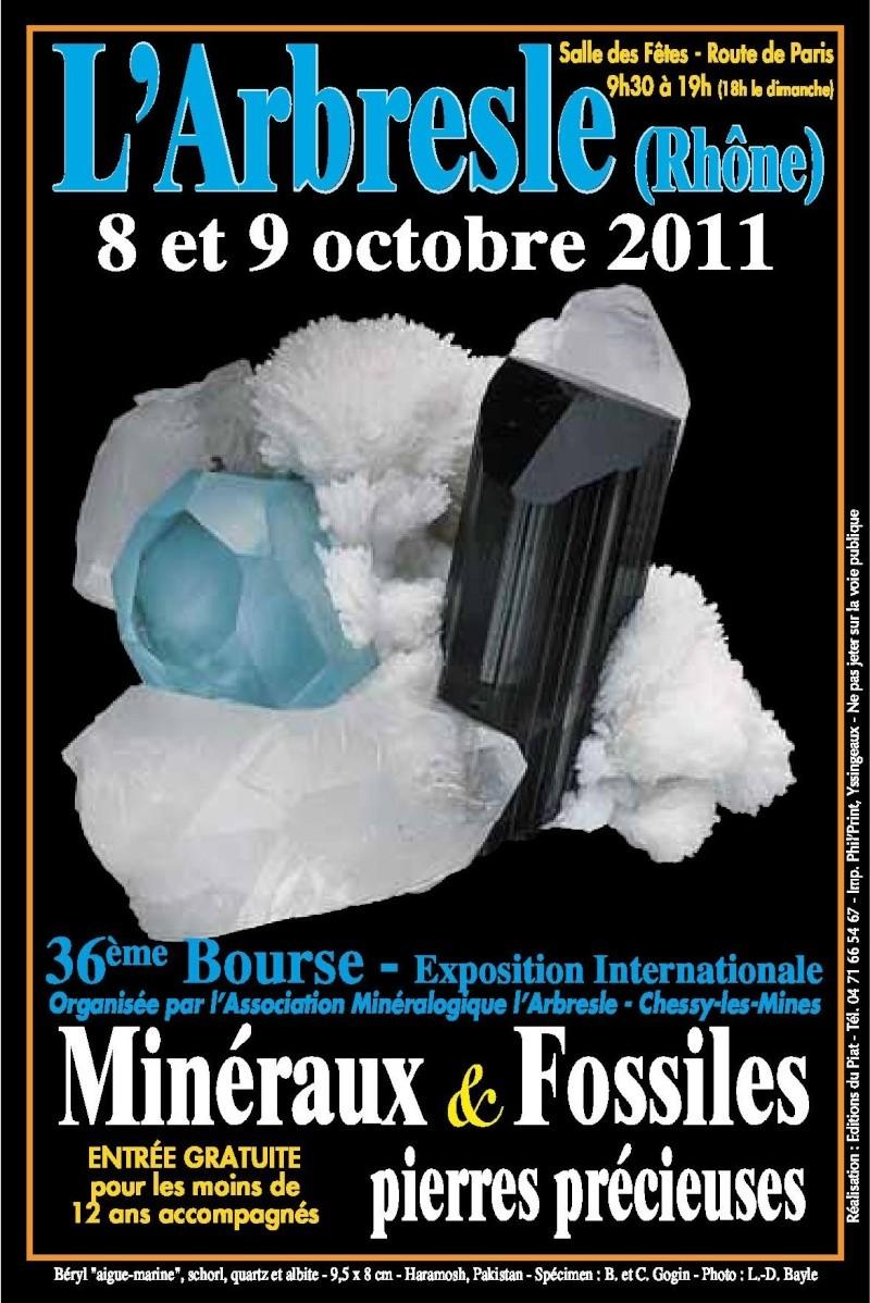 2011- Bourse aux Minéraux et Fossiles, pierres précieuses de l'Arbresle Bourse10