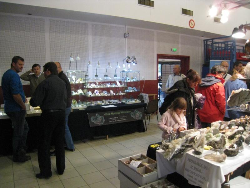 2011- Bourse aux Minéraux et Fossiles, pierres précieuses de l'Arbresle Img_2110