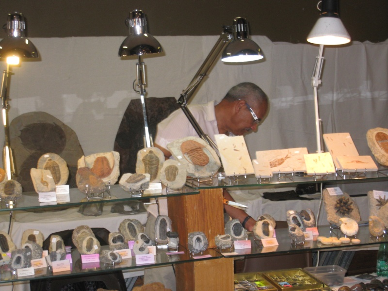 2011- Bourse aux Minéraux et Fossiles, pierres précieuses de l'Arbresle Img_2113