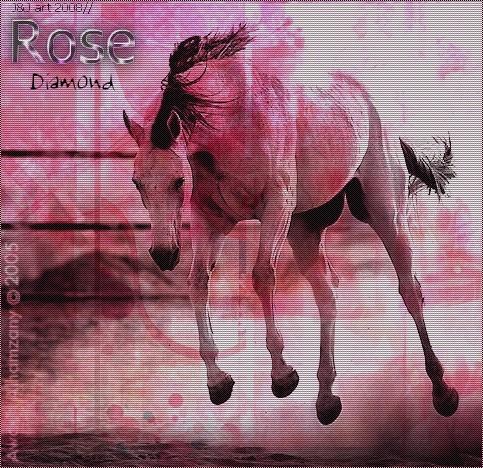 Dons de Moi Rose_d12