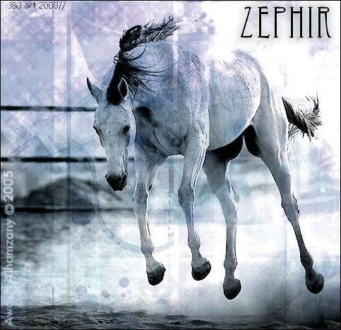 Dons de Moi Zephir10