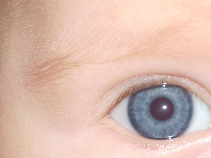 Les yeux de bébé Photo_53