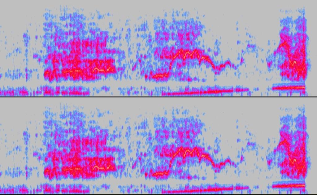 Detection des météores Spec_211