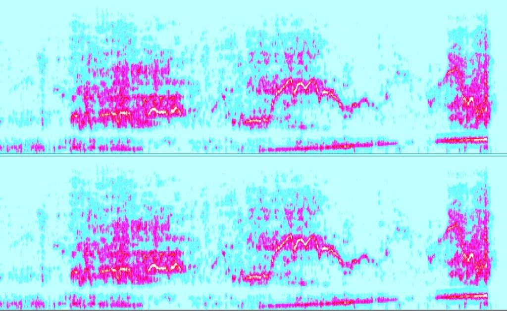 Detection des météores Spec_212