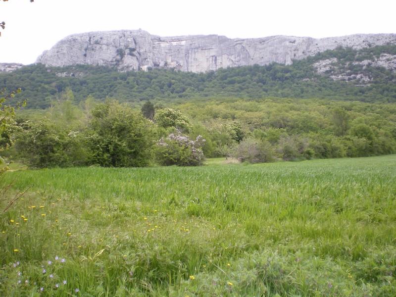 La Sainte Baume Sainte10