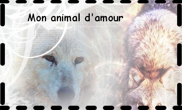 Mon animal d'amour
