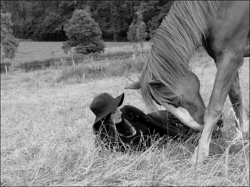 Concours Photo Juillet : Quand Cheval rime avec Poésie... P1100510