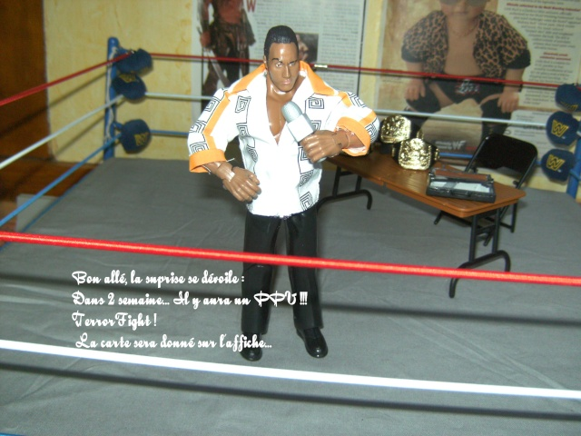 EFW: Extrem Figs Wrestling - Page 4 Bild2915