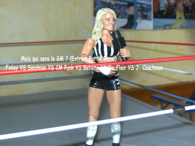 EFW: Extrem Figs Wrestling - Page 5 Bild2936