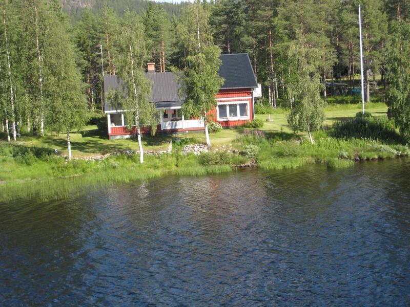 Gymnadenia s.l. en Scandinavie, juillet 2008 Img_1512