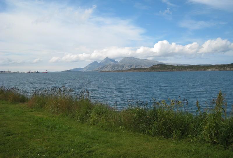 Gymnadenia s.l. en Scandinavie, juillet 2008 Img_1711