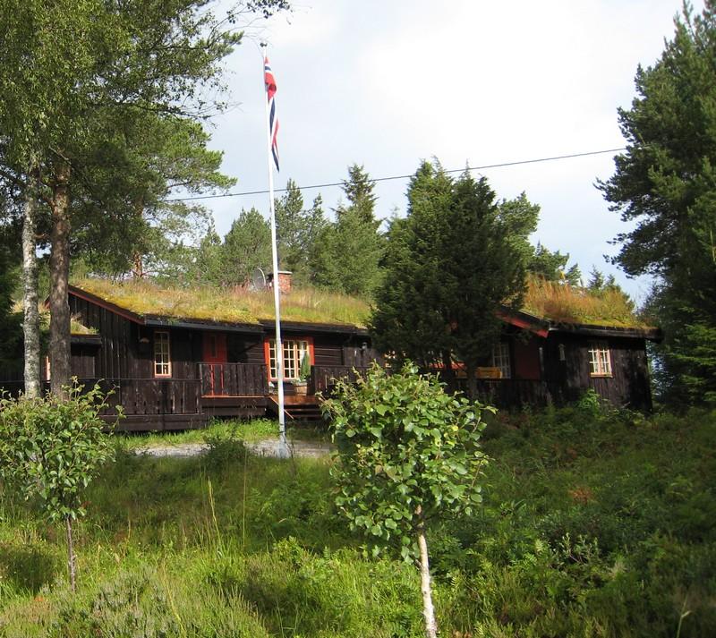 Gymnadenia s.l. en Scandinavie, juillet 2008 Img_1810