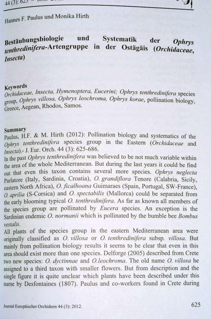 Le dernier JEO et les tenthredinifera s.l. Paulus10