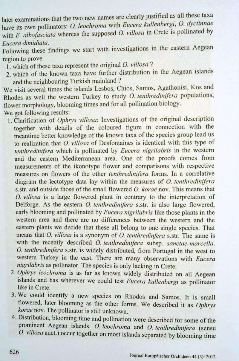 Le dernier JEO et les tenthredinifera s.l. Paulus11
