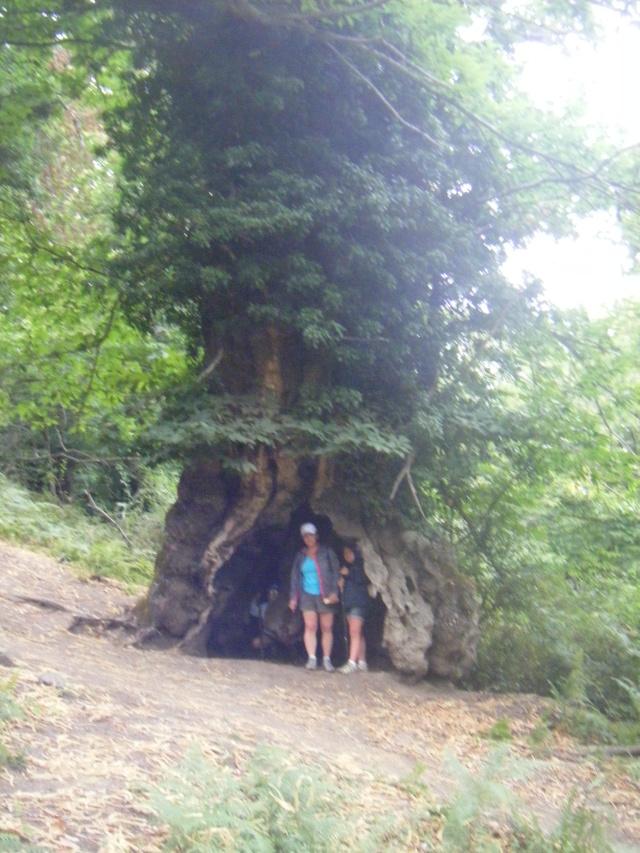 Corse été 2011 Dscf0224