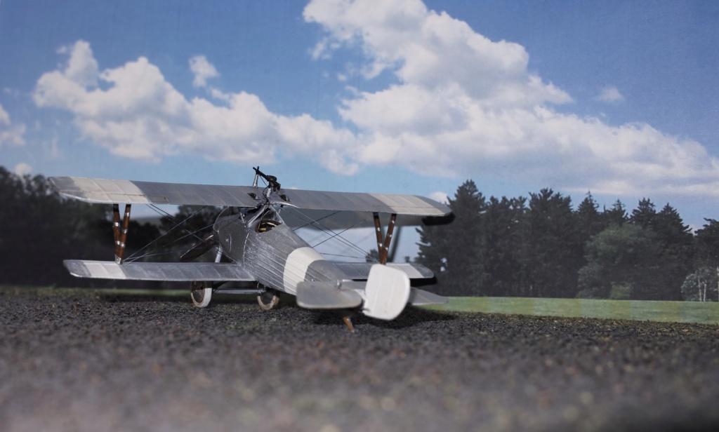 Nieuport 24 Sdim0212