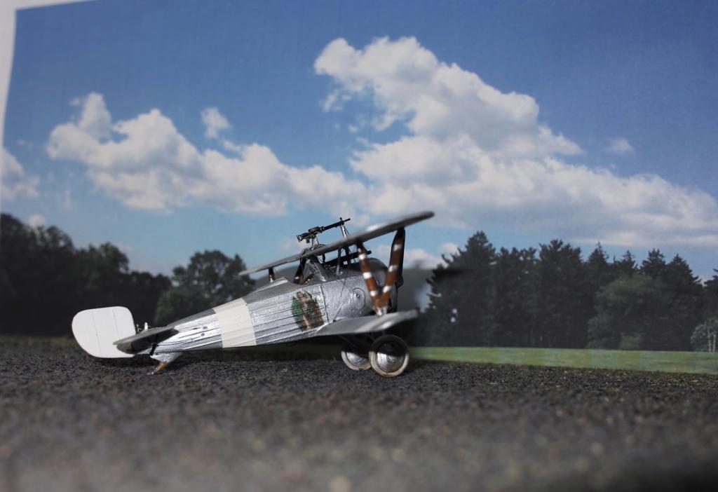 Nieuport 24 Sdim0213