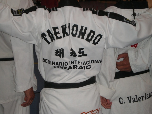 V Seminario Internacional Taekwondo AEHT Pa040015