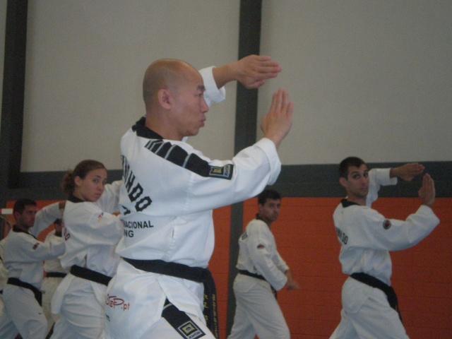 V Seminario Internacional Taekwondo AEHT Pa050010