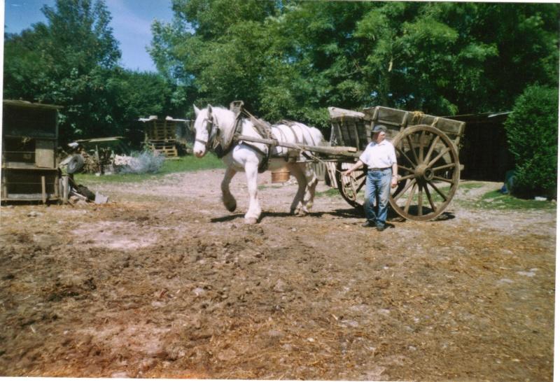 Thème de Janvier : le cheval au travail - Page 3 Boulon14