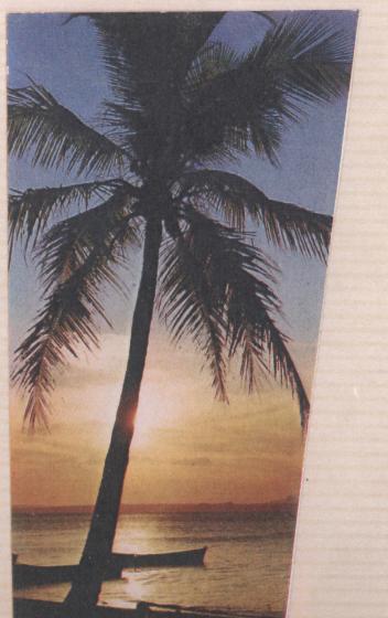 [ARCHIVÉ] DIÉGO SUAREZ  - TOME 003 - Page 22 Photo_16