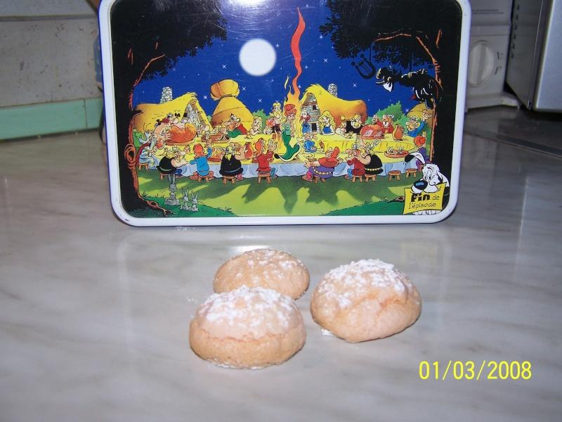 Biscuits à la cuillère Boudoi10