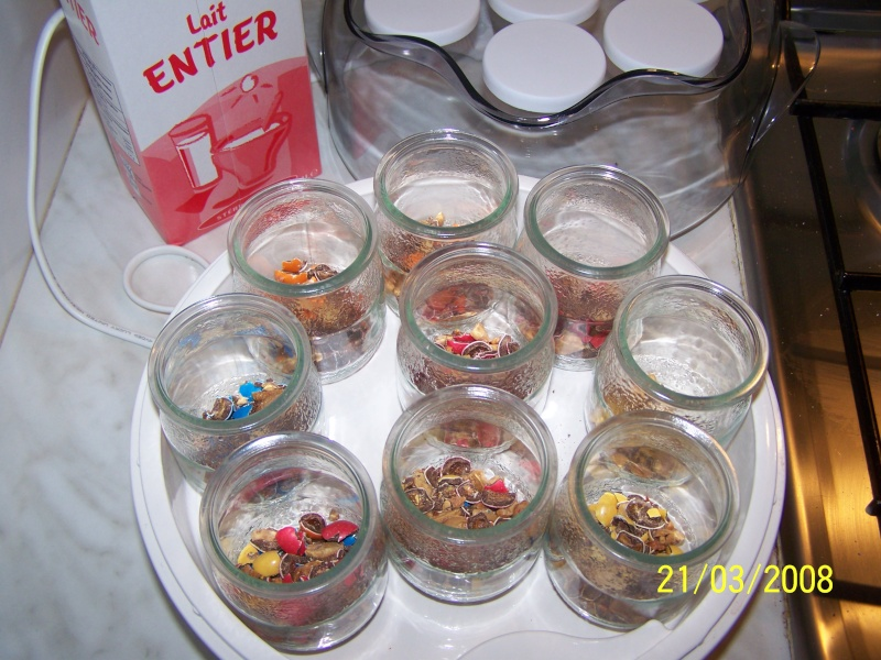 Yaourt aux bonbons et autres gourmandises Yaourt10