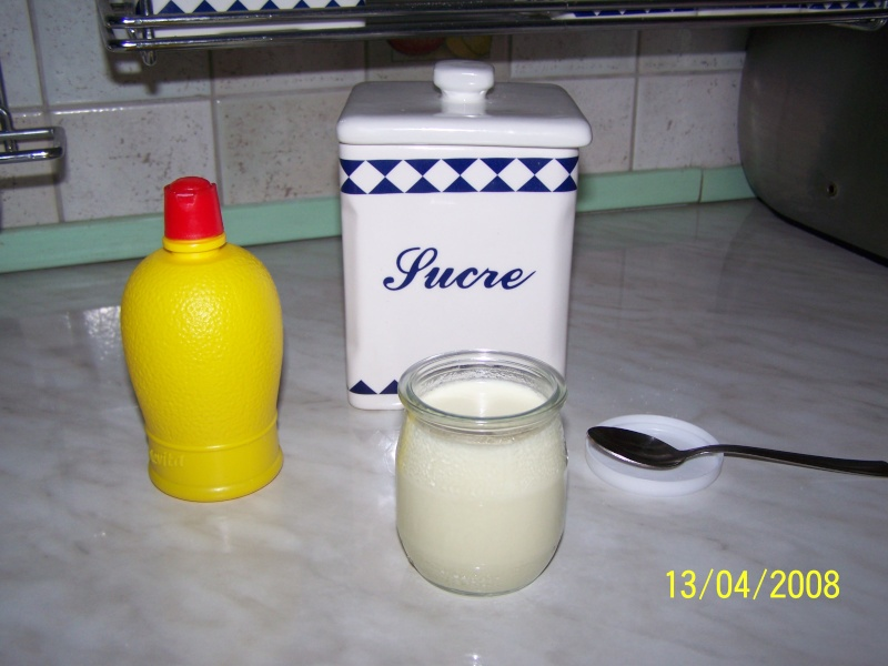 Yaourts au citron ou à l'orange Yaourt16