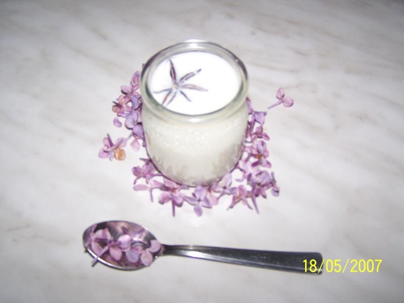 yaourt aux aromates Yaourt25