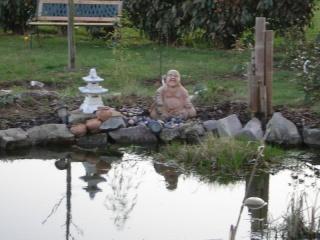 le bassin  Dscn1321