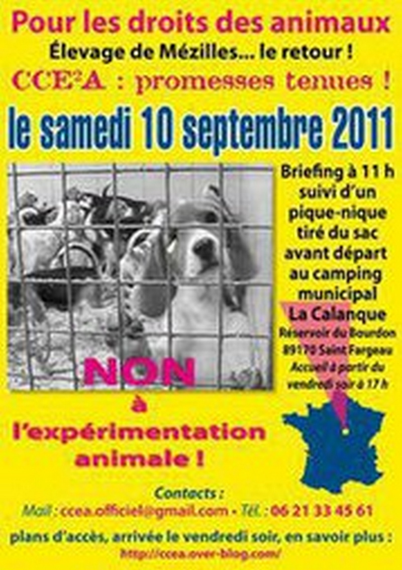 manifestation contre l'expérimentation animale 27639010