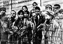 Pagará Bélgica compensación a víctimas del Holocausto 210_ho10