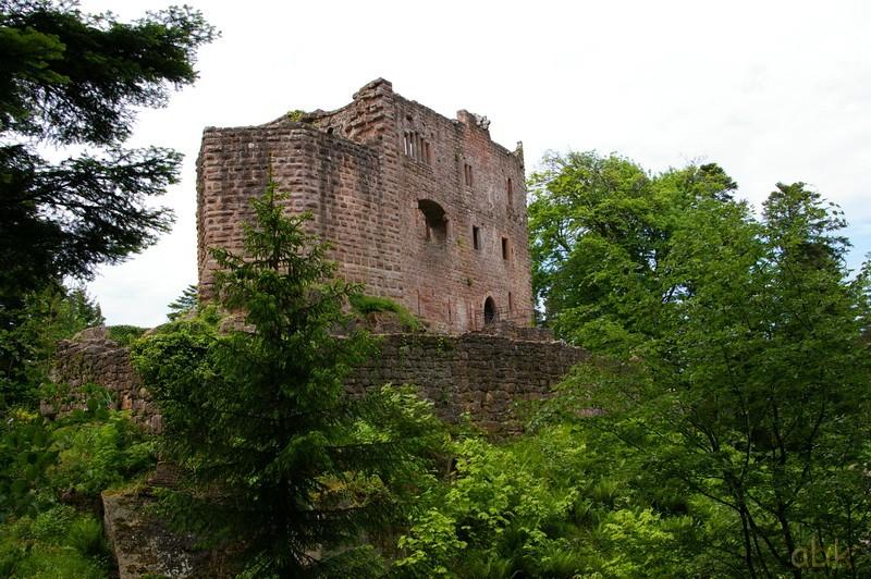 Le Château du Birkenfels Birken11