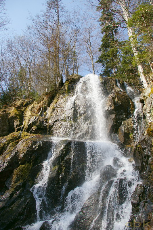 La Cascade du Hohwald - Page 3 Cascad11