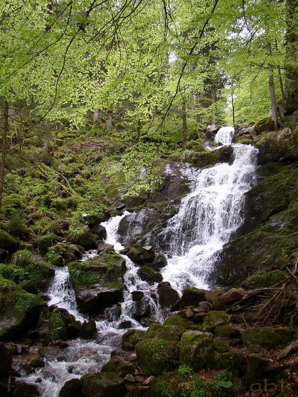 La Cascade de la Serva Cascad19